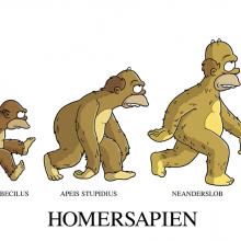 Prove di evoluzione